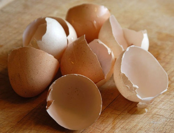 Eggshells - natural supplement